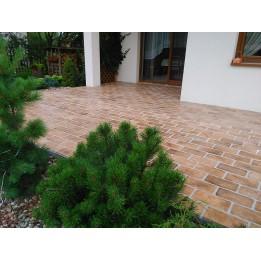 Alter Ziegel für Terrasse beige/braun 3,5cm